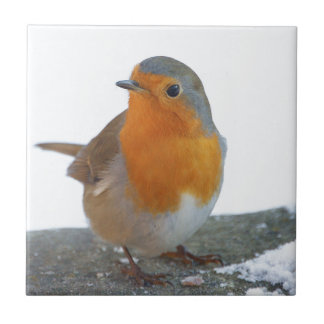 Robin Red Breast Small Square Tile
