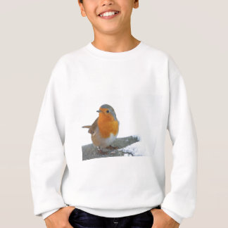 Robin Red Breast Sweatshirt