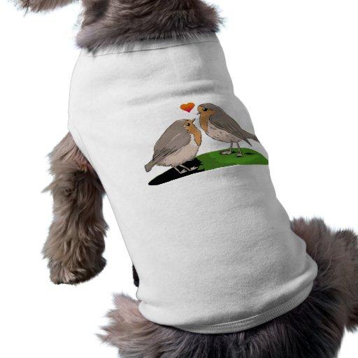 Robin redbreast bird love pet clothing