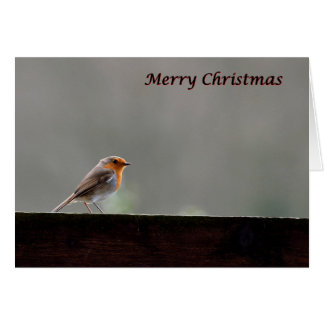 Robin redbreast Christmas card