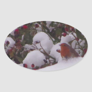 Robin Redbreast in the Snow Oval Sticker