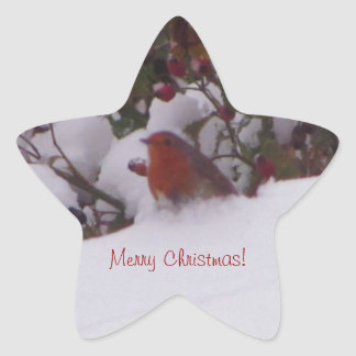 Robin Redbreast in the Snow Star Sticker