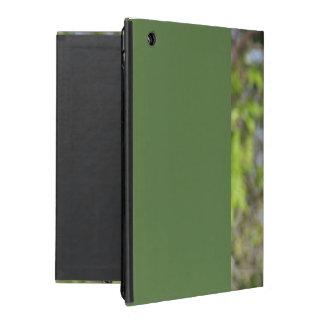 Robin Redbreast iPad Case