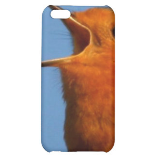 Robin Redbreast iPhone 5C Cases