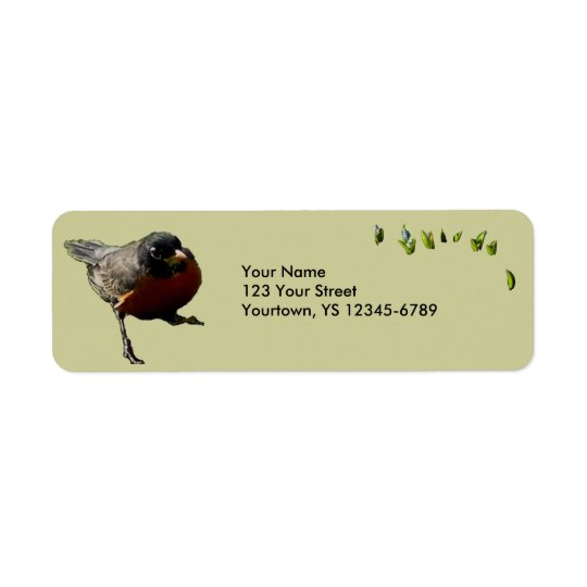 Robin Return Address Labels