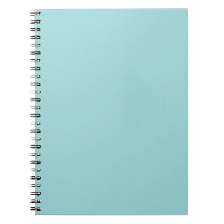 Robin s Egg Blue Notebook Notebook