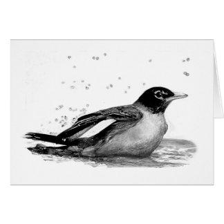 Robin Taking a Bath Card