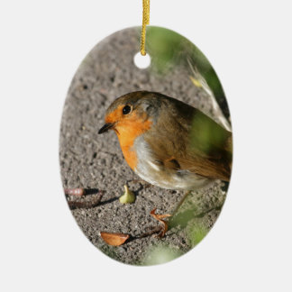 Robin with his worm ceramic ornament