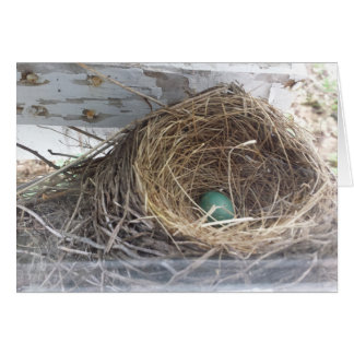 Robin's egg in the nest, envelope included card