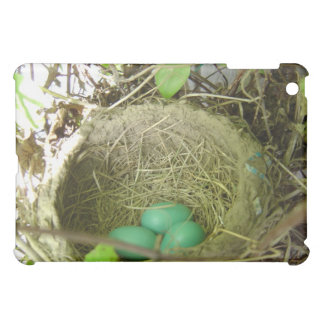 Robin's eggs iPad case