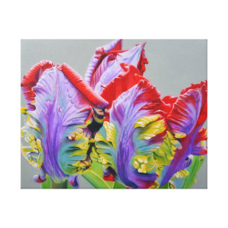Rocco Parrot Tulip, unusual curly pedals, colorful Canvas Print