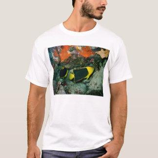 Rock Beauties T-Shirt