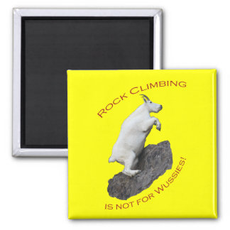 Rock Climbing is not for Wussies! Square Magnet