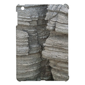 Rock Face iPad Mini Case