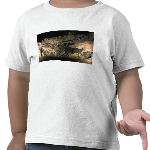 Rock painting of a horned animal, c.17000 BC (cave Tshirt
