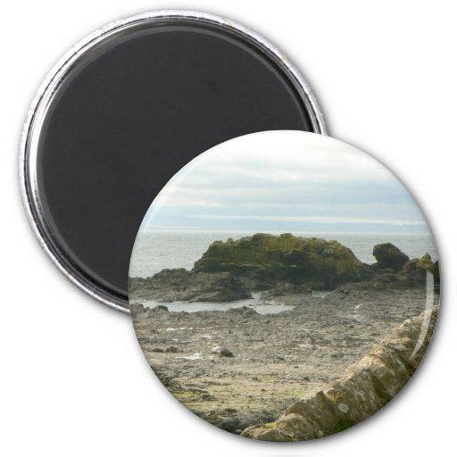 Rock Shore Refrigerator Magnet
