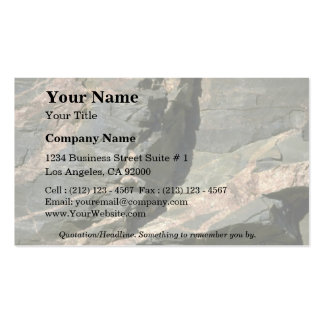 Rock Solid Canadian Shield Business Card Template