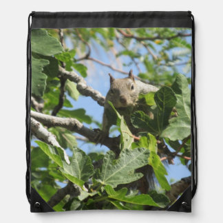 Rock Squirrel Drawstring Bag