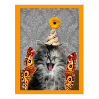 Rock Star kitten postcard