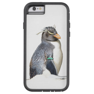 Rockhopper Penguin iPhone 6 case