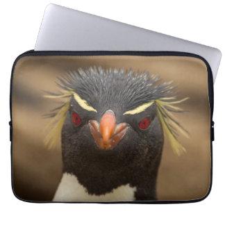 Rockhopper penguin portrait laptop computer sleeve