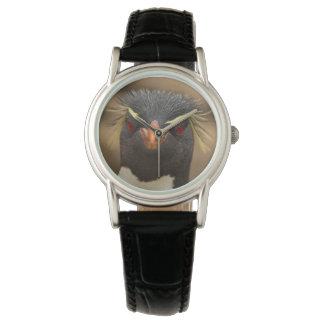 Rockhopper penguin portrait watch