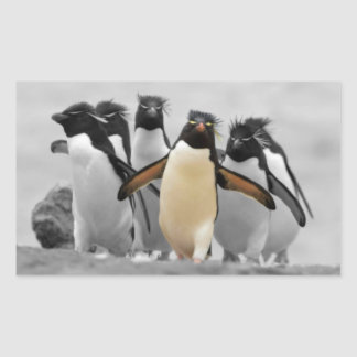 Rockhopper Penguins Rectangular Sticker