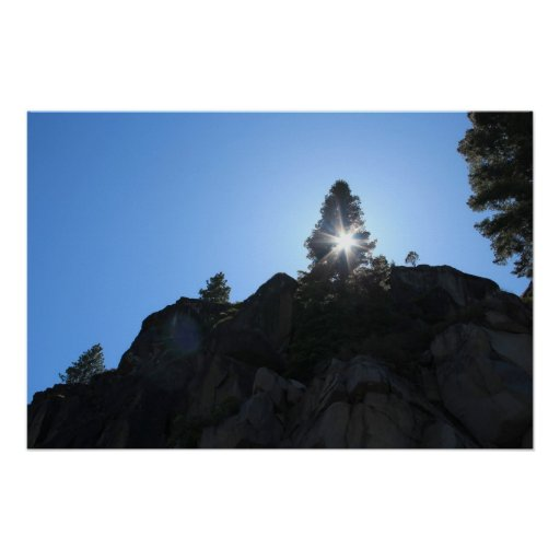 Rocks and Pines Print