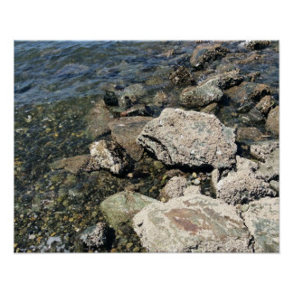 Rocks and small stones at PNW beach Poster