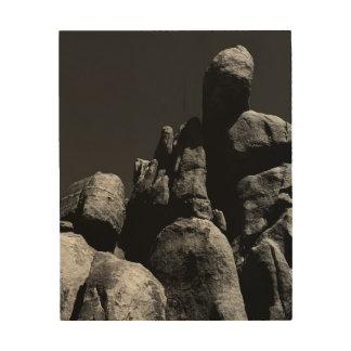 Rocks at Joshua Tree National Park Wood Print