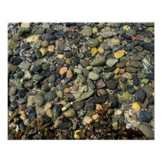 Rocks at Pacific Northwest beach Poster