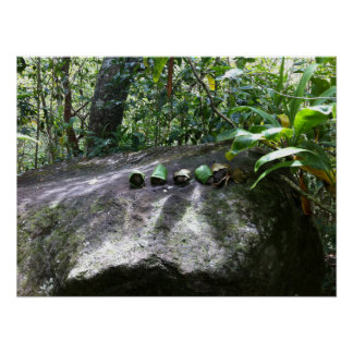 Rocks Wrapped in Ti Leaves, Maui, Hawaii Poster