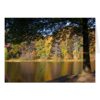 Rockwell Park Pond - Blank Greeting Card
