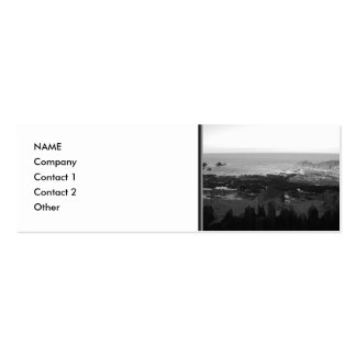 Rocky Beach Scenic Coastal View Black and White Business Card Template