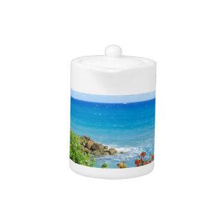 rocky-foliage-coast-deerfield-beach-4s6490