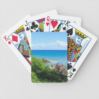 rocky-foliage-coast-deerfield-beach-4s6490 bicycle playing cards