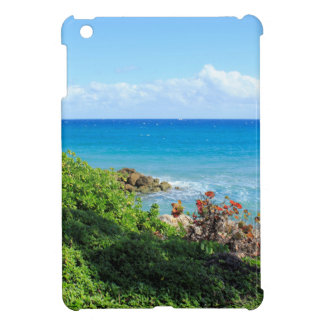 rocky-foliage-coast-deerfield-beach-4s6490 case for the iPad mini