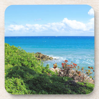 rocky-foliage-coast-deerfield-beach-4s6490 coaster