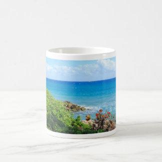 rocky-foliage-coast-deerfield-beach-4s6490 coffee mug