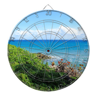 rocky-foliage-coast-deerfield-beach-4s6490 dartboard