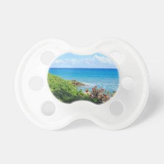 rocky-foliage-coast-deerfield-beach-4s6490 dummy