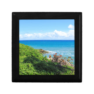 rocky-foliage-coast-deerfield-beach-4s6490 gift box