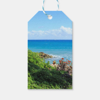 rocky-foliage-coast-deerfield-beach-4s6490 gift tags