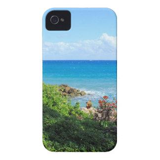 rocky-foliage-coast-deerfield-beach-4s6490 iPhone 4 case