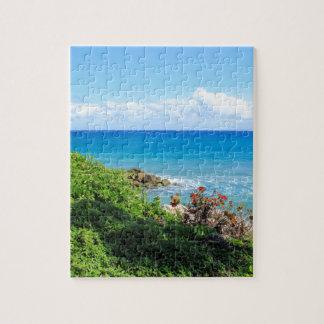 rocky-foliage-coast-deerfield-beach-4s6490 jigsaw puzzle