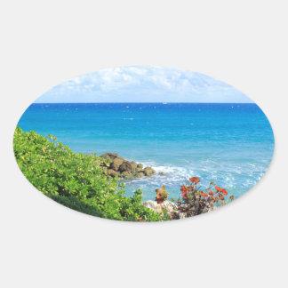 rocky-foliage-coast-deerfield-beach-4s6490 oval sticker