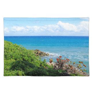 rocky-foliage-coast-deerfield-beach-4s6490 placemat