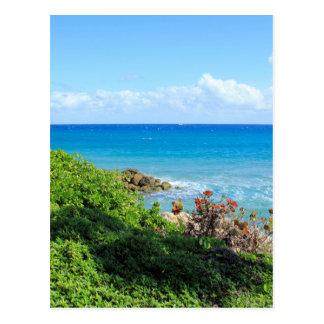 rocky-foliage-coast-deerfield-beach-4s6490 postcard