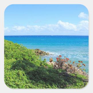 rocky-foliage-coast-deerfield-beach-4s6490 square sticker