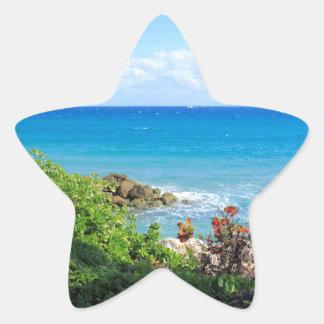 rocky-foliage-coast-deerfield-beach-4s6490 star sticker
